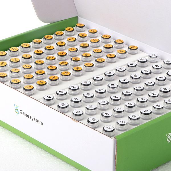 Prueba de PCR SARS-CoV-2 03 - CCLAB